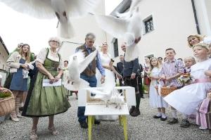 167b-Fotograf-Hochzeit-Margret-Franz-Köstendorf-6649